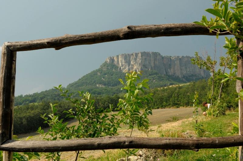 arteumanze-foto-loretta-amorini-2