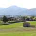 """Fattoria """"Rosa dell'Angelo"""", in località Rivalta di Lesignano de' Bagni (Pr)"""