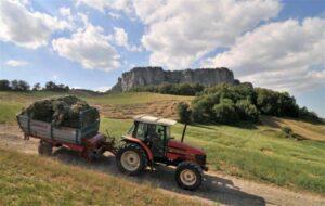 Agricoltura all'ombra della Pietra (B. Vanicelli)