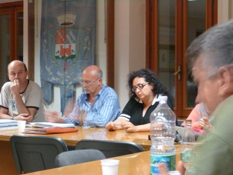Consiglio comunale Toano (2.7.2013)