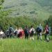 Escursione in montagna (1)