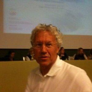 Fausto Giovanelli