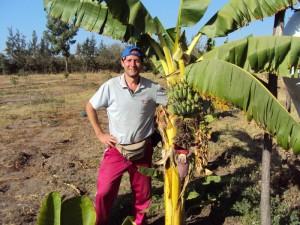 Rientrati dalle missioni in etiopia i 21 volontari del for Albero di banane