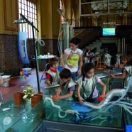 atelier-acque-energie1-145746_186x186