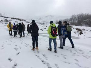 Neve Natura